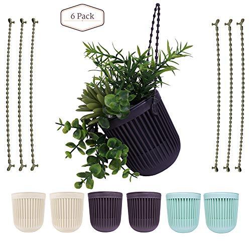 (Plastic Succulent Hanging Flower Pots|Set of 6|3.5