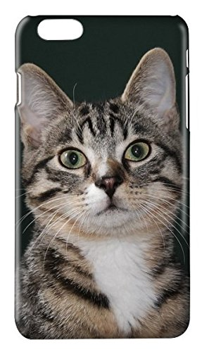 Funda carcasa gatos para Huawei P7 P8 P9 P8LITE P9LITE LITE ...