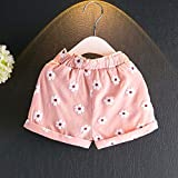 2PCS Set Toddler Kids Baby Girls Outfits Clothes