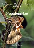 Notodontidae, Alexander Schintlmeister, 8788757773