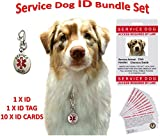Service Dog ID, Tag, Cards - Personalized and Customizable - Service Animal Set: Service Dog I.D. + 10 Service Dog Cards + Service Dog Tag - Best for Training, Therapy, Veterans, PTSD, Anxiety, ADA