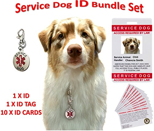 Service Dog ID, Tag, Cards - Personalized and Customizable - Service Animal Set: Service Dog I.D. + 10 Service Dog Cards + Service Dog Tag - Best for Training, Therapy, - Address Mall Crystal
