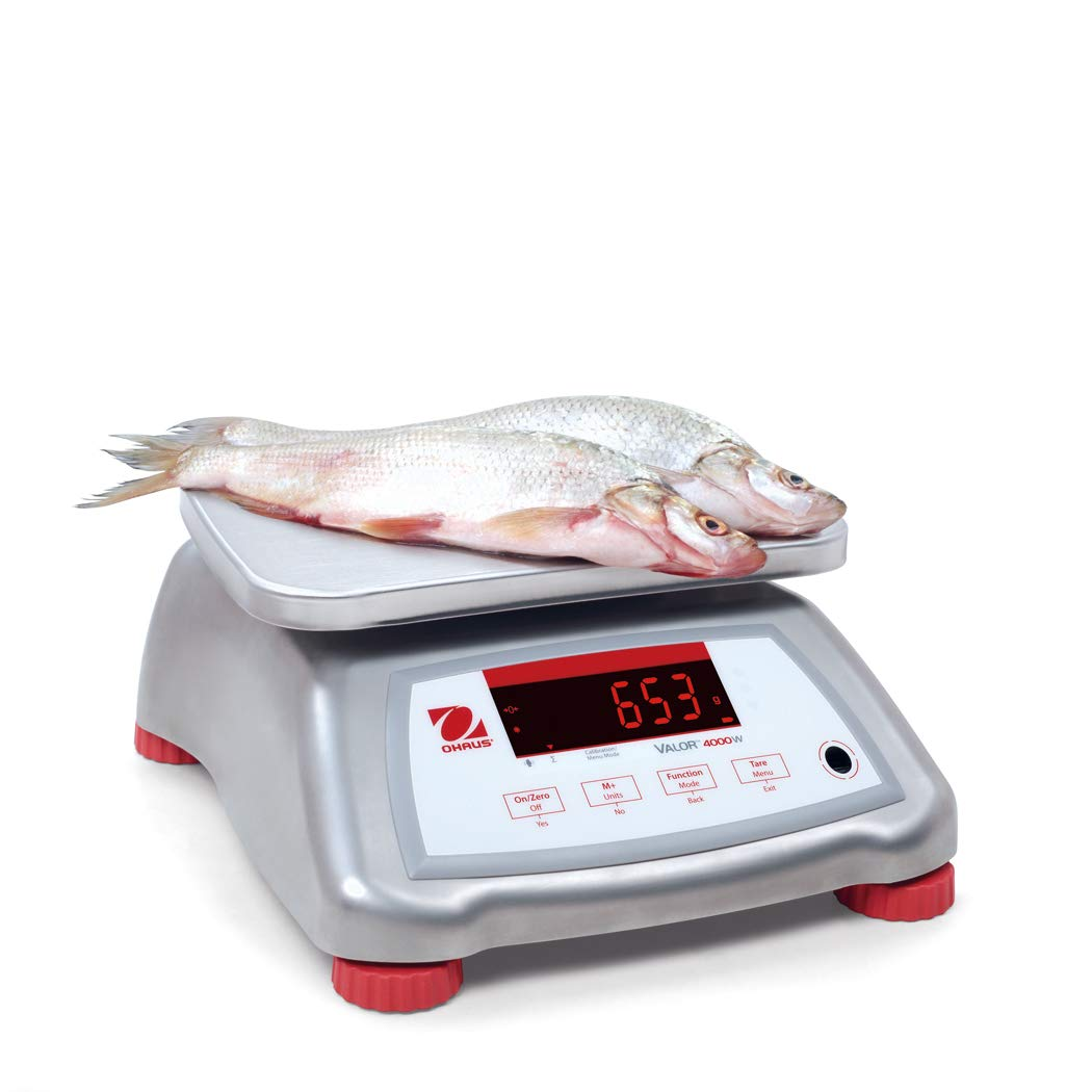 The Amazing Ohaus V41XWE3T Valor 4000 Legal For Trade Food Scale-3 kg/6 lb
