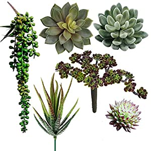 Supla Pack of 6 Assorted Artificial Succulents Plant Picks Textured Faux Succulent Pick Succulent Stems Fake Succulent Bouquet String of Pearls Succulent Faux Succulent Floral Arrangement Accent 62
