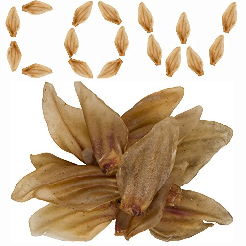 Smoked Cow Ears Dogs Natural product image