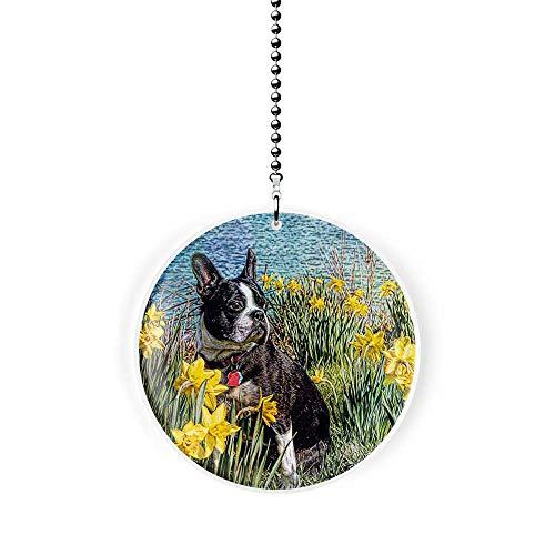 Boston Terrier in the Daffodils Fan/Light Pull
