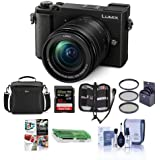 Panasonic Lumix DC-GX9 20.3MP Mirrorless Camera with 12-60mm F3.5-5.6 Lens, Black - Bundle with Camera Bag, 32GB SDHC U3 Card, Cleaning Kit, Memory Wallet, Card Reader, 58mm Filter Kit, Software Pack