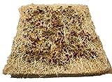 MagJo Chicken Nest Box Herbs