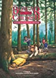 Mystery of the Fallen Treasure (The Boxcar Children Mysteries)