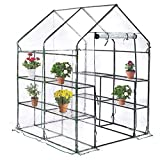 "BestMassage Portable Mini Greenhouse Indoor Outdoor Plant Shelves Tomato Canopy Walk-in Garden Green House for Winter(L56.5""W56.5""H76"")"