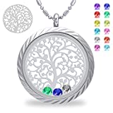 Family Tree of Life Birthstone Necklace, Screw Floating Charm Living Memory Lockets, All Charms Included