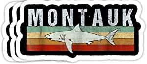 GrayFoxxy Montauk NY Shark Montauk Vintage Fishing Gift Decorations - 4x3 Vinyl Stickers, Laptop Decal, Water Bottle Sticker (Set of 3)