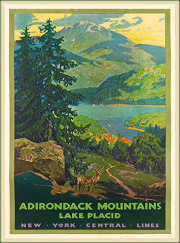 Adirondack Mountains Lake Placid New York Central Lines United States of America Vintage Railroad Railway Travel Advertisement Art Poster. Poster measures 10 x 13.5 inches (New Stock Central York Railroad)