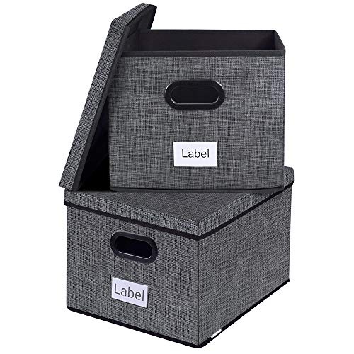 Homyfort File Organizer Box,Collapsible Office Filing Box for Easy File Folder Storage,Organize Your Documents and Hanging Files in Style Black with Grid Printing Set of 2