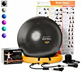 Mantra Sports Exercise Ball - Complete Home Gym Fitness System – 65cm & 75cm Swiss Ball With Stability Base - Resistance Bands - A1 Workout Guide - Foot Pump - Ideal for Physio, Rehab, Yoga, Pilates