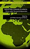 Industrial Change in Africa: Zimbabwean Firms under Structural Adjustment (Studies on the African Economies Series)