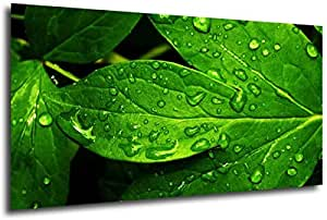 Nature-6029, Size 100x70x2 Cm. Printed On Canvas On A Wooden Frame.