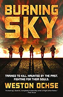 Book Cover: Burning Sky