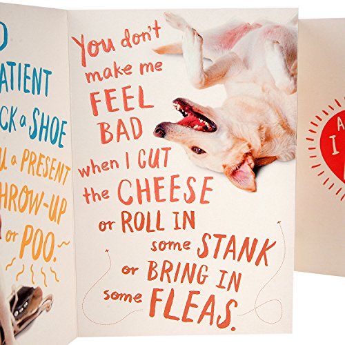 Hallmark Funny Father's Day Greeting Card from the Dog (Dog Dad) Photo #3