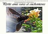 Petits Amis Rares Et Enchanteurs 2017: Organisateur - Visiteurs Des Fleurs (Calvendo Animaux) (French Edition)