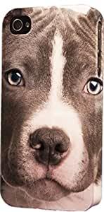 Black & White Pit Bull Face Dimensional Case Fits iPhone 4 or iPhone 4s