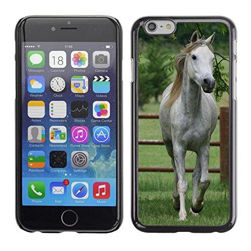 "Premio Sottile Slim Cassa Custodia Case Cover Shell // V00003987 cheval blanc 2 // Apple iPhone 6 6S 6G 4.7"""