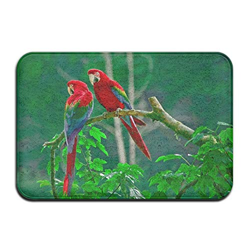 - Parrots Paradise Birds Animals Non Slip Indoor Doormat for Home Office Clean Absorbent Antiskid Kitchen Bath Mats