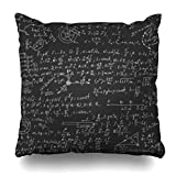 Decor Champ Throw Pillow Covers Dynamics Fundamental Physical Formulas On Blackboard Abstract Thermodynamics Physics Science Home Decor Sofa Pillowcase Square Size 20 x 20 Inches Cushion Cases