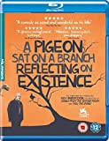 A Pigeon Sat on a Branch Reflecting on Existence [Blu-ray] [UK Import]