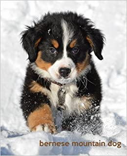 Bernese Mountain Dog A Gift Journal For People Who Love