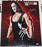 #1: Sting Signed WWE 16x20 Photo COA 2k15 Video Game Picture xbox PS4 Auto'd - PSA/DNA Certified - Autographed Wrestling Photos