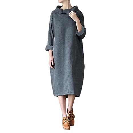 Las mujeres vestido de invierno suelta cuello alto manga larga sudadera blusa Tops Sweatshirt Dress Kaftan
