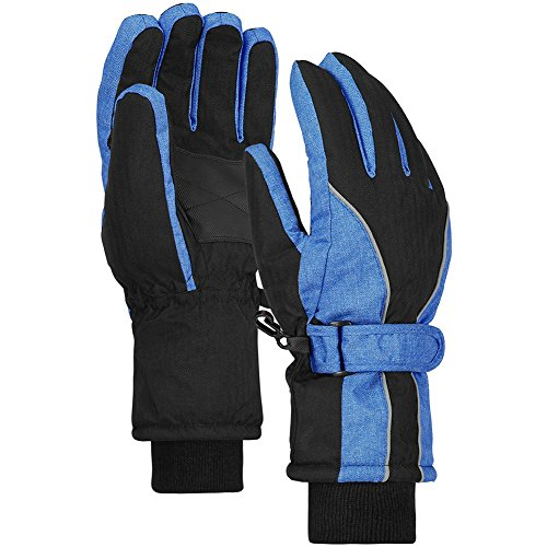 (Terra Hiker Waterproof Winter Warm Ski Gloves 3M Thinsulate Snowmobile Cold Weather Gloves for Men, Women, Adult)