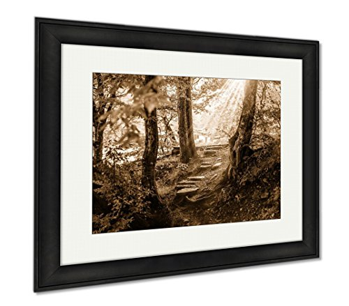 Ashley Framed Prints Path And Steps In The Beautiful Magic Forest, Wall Art Home Decoration, Sepia, 30x35 (frame size), Black Frame, AG6400099 Museum Black Path Light