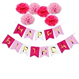 Pastels Party decorations Happy Birthday Bunting 13 flags Banner,Set of 6 Rose Red,PinkTissue Paper Pom Poms