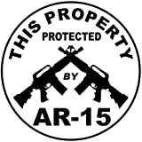 1 Pc Illustrious Fashionable This Property Protected by AR-15 Stickers Sign Surveillance Windows Decal Anti-Burglar Size 4