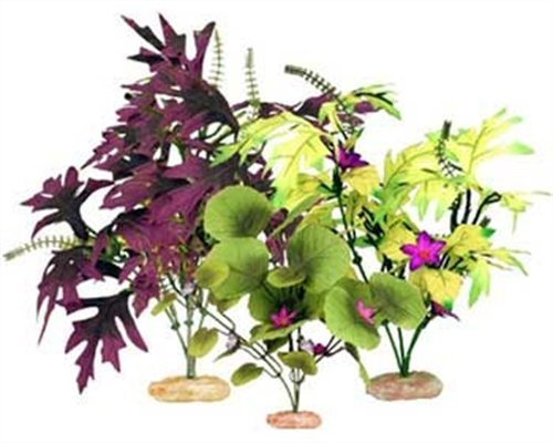 Vibran-Sea Amazon Broad Leaf Flowering Cluster Assortment by bluee Ribbon Pet Products