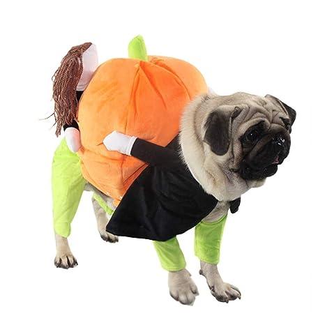 first23 Disfraz de Halloween para Perro Divertido Disfraz de ...