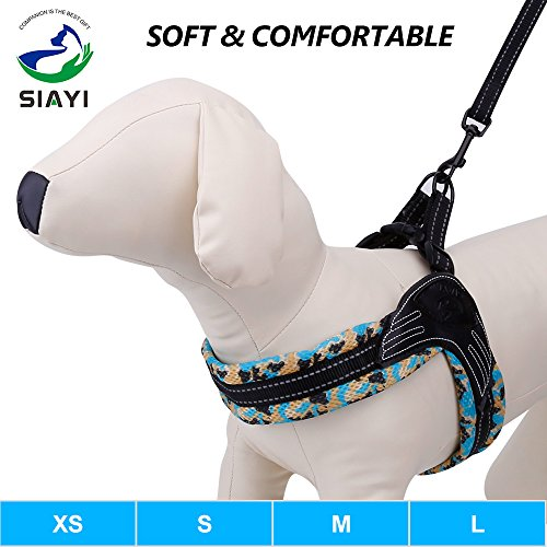 weights harness - 8