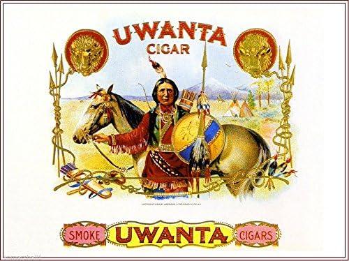 1900 Buffalo Vintage Cigar Box Inner Tobacciana Label Advertisement Art Print