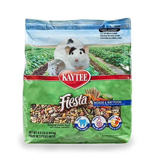 51717dKdEtL - Kaytee Fiesta Mouse and Rat Food, 4.5-lb bag