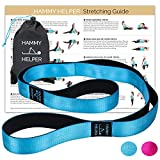 Yoga Strap for Stretching, Lower Back Pain Relief Stretching Poster, & Travel Bag | Tough Non-Elastic Nylon Stretching Strap with Loops all Neoprene Padded | 2 in 1 Doubles as a Yoga Mat Carry Strap