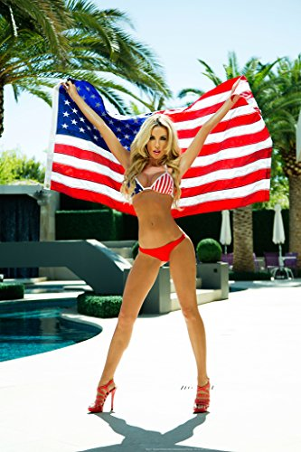 4th of July by Daveed Benito Cool Wall Decor Art Print Poster 12x18