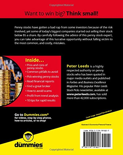 STOCKS FOR DUMMIES EBOOK