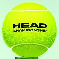 Head Championship Pelota de Tenis despresurizada 4 Pieza(s ...