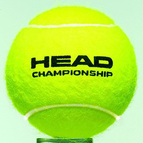 Amazon.com : HEAD 575004 4B Championship - 12 DZ TENİS TOPU ...