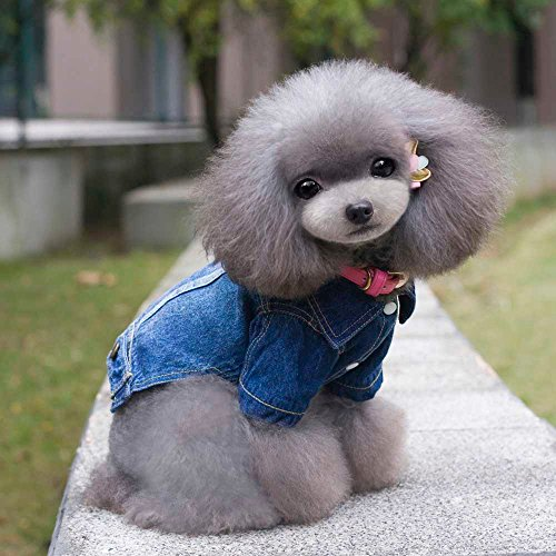 Soft Blue Jeans Denim Cute Pet Dog Puppy Coat Jacket Clothes Costume Apparel Hoodies for Small Medium Dogs (S, Blue) -