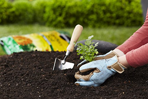 Miracle-Gro 70551430 All-Purpose Garden Soil, 1 CF by Miracle-Gro (Image #2)