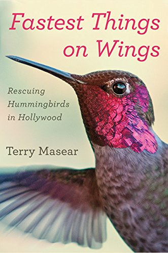 Fastest Things on Wings: Rescuing Hummingbirds in Hollywood (10 Fastest Land Animals In The World)