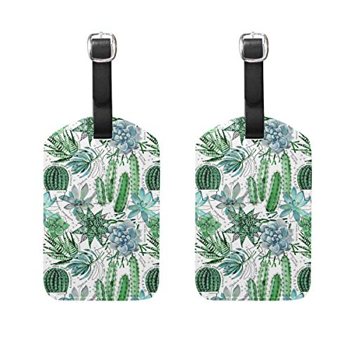 Etiqueta de equipaje para veliz de equipaje 2 piezas de suculentas de plantas naturales de piel de cactus bolsa de viaje...
